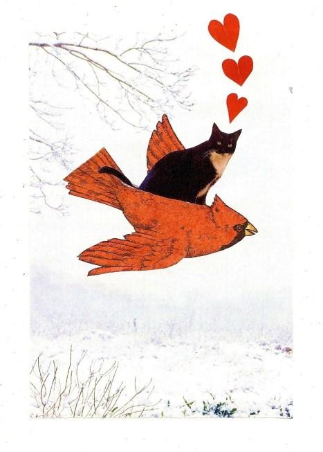 cardinal with cat